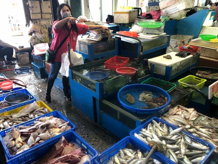 梧棲魚市のマーケット3